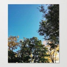 A Blue Fall Day Canvas Print