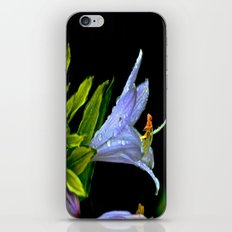 Water Clings to Beauty iPhone & iPod Skin