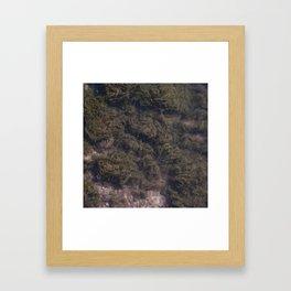 Underwater 02 Framed Art Print