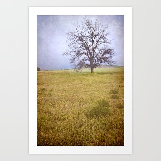 Old lonely tree under the rain Art Print