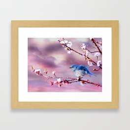 Bluebird in Pink Framed Art Print