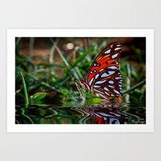 Beautiful Butterfly.... Art Print