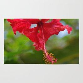 Scarlet Flower Rug
