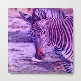 Animal ArtStudio 1019 Zebra Metal Print