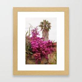 Fuchsia Garden Framed Art Print