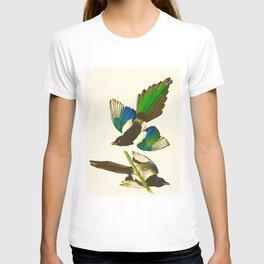 American Magpie Hand Drawn Illustrations Vintage Scientific Art John James Audubon Birds T-shirt