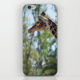 Giraffe Proud! iPhone Skin