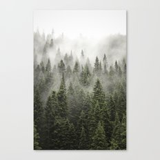 Porcupine ridge (clarity) Canvas Print