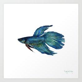 Mortimer the Betta Fish Art Print