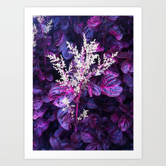 Vibrant Florals  Art Print