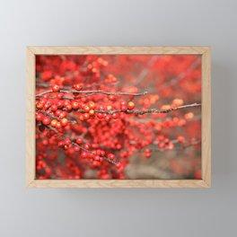 Winter Berries Framed Mini Art Print