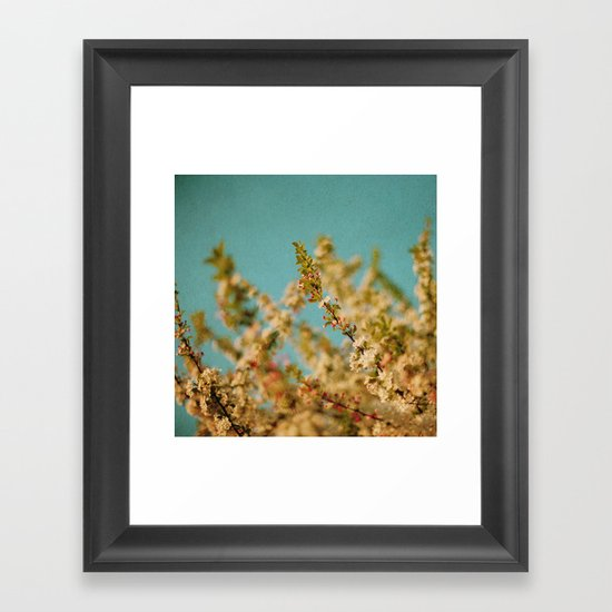 Darling Buds of May Framed Art Print