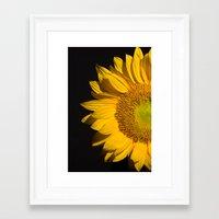 sunflower Framed Art Prints featuring sunflower by mark ashkenazi