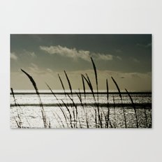 Grass and an Open Ocean Canvas Print