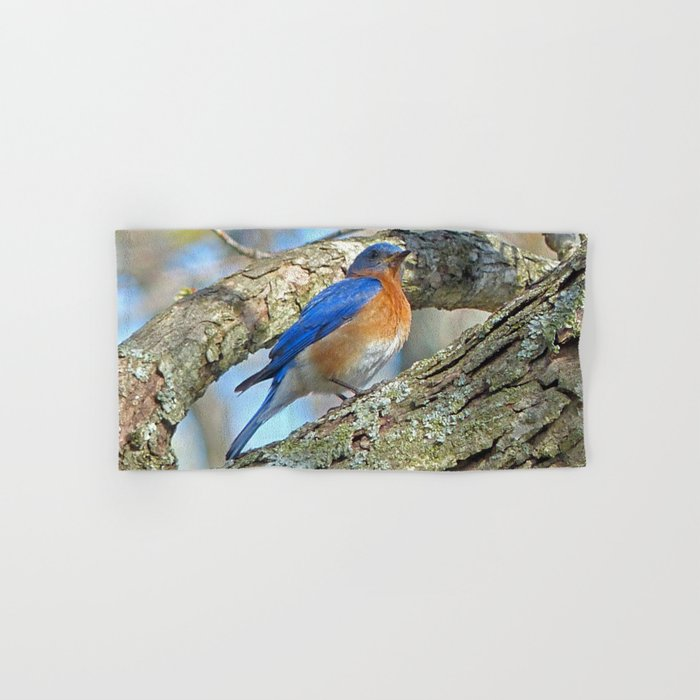 Bluebird in Tree Hand & Bath Towel