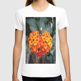 LOVE, LANTANA T-shirt
