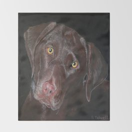 Inquisitive Chocolate Labrador Throw Blanket