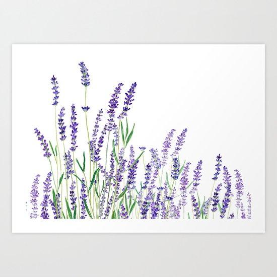 lavender watercolor horizontal Art Print