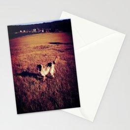 Buckshots Admirable Loyalty Stationery Cards