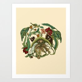 Botanical English Bulldog Art Print