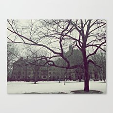 Cold Day Canvas Print