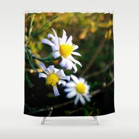 lions Shower Curtains featuring Small lions by Emilia
