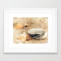 shells Framed Art Prints featuring Shells by Joanna Pechmann