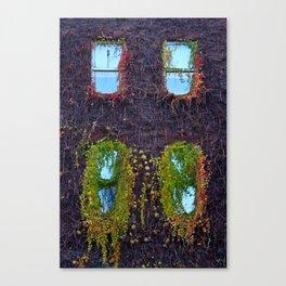 Dublin: Windows Canvas Print