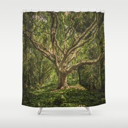 Spirits inside the wood Shower Curtain