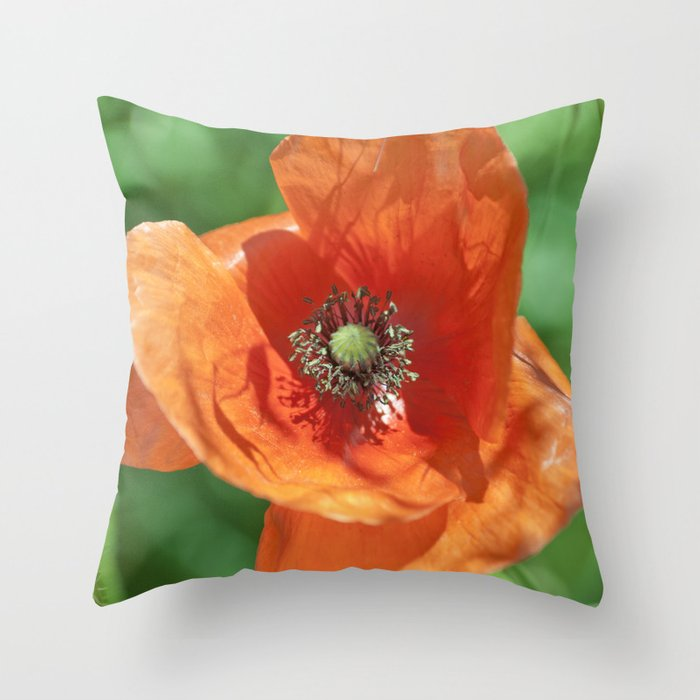 Red poppy flower Throw Pillow