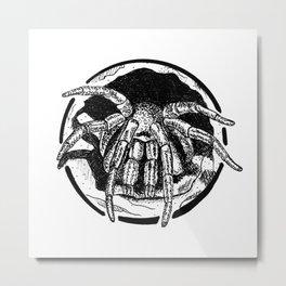 Spider Ink Drawing Metal Print