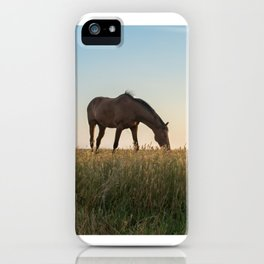 Grazing at Sunset iPhone Case