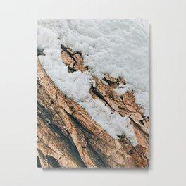 Snow and Bark Metal Print