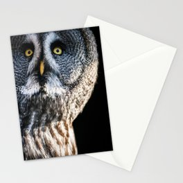 Great Grey Owl Stationery Cards