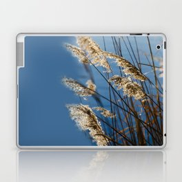 Camargue nature Laptop & iPad Skin