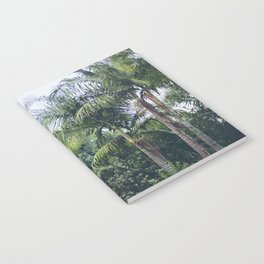 Palm Trees in a Tropical Garden Notebook