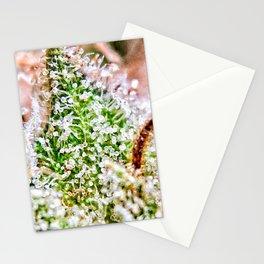 Skywalker OG Kush Strain Frosty Buds Calyxes Close Up Stationery Cards