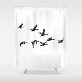 Geese in formation, graphic print, modern Shower Curtain