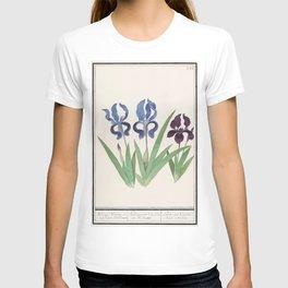 Purple iris Iris germanica (1596-1610) by Anselmus Botius de Boodt T-shirt