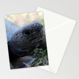 Step Off Stationery Cards