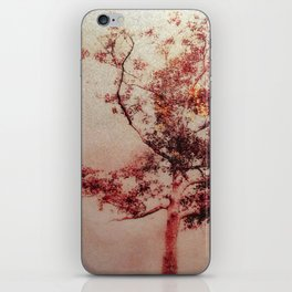 Red Tree with Gold Leaf iPhone Skin