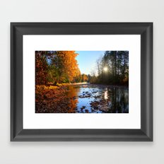 Salmon Sanctuary - Adams River BC, Canada  Framed Art Print