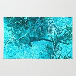 On the Ocean Floor Rug
