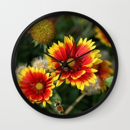 Bees on Blanket Flowers Wall Clock
