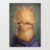 alpaca Canvas Prints featuring Alpaca by Ronan Lynam