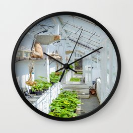 The Lost Gardens of Heligan - Victorian Glass House 1 Wall Clock