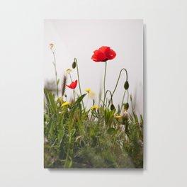 Spring Flora 1086 Metal Print