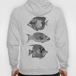 Coral Reef Fish Hoody