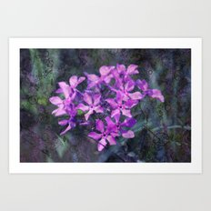 purple pink flower explosions Art Print
