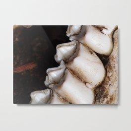 jawbone VI Metal Print